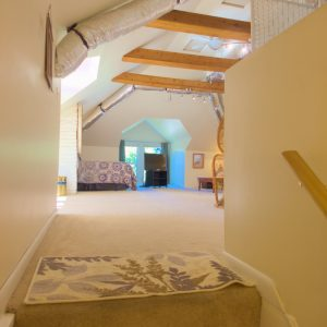 First look at attic suite